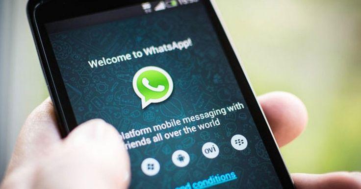 Atualizações em conversas em grupo e mensagens em gif no WhatsApp