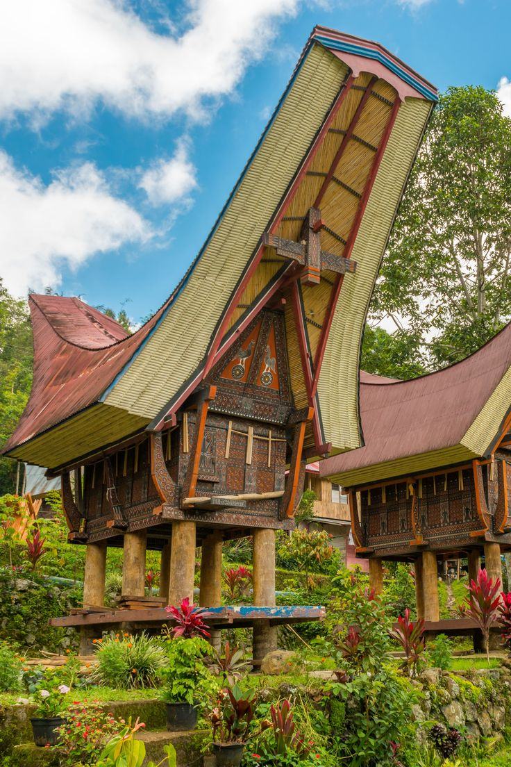 Pays Toraja, terre de magie Séjour Indonésie di 2020