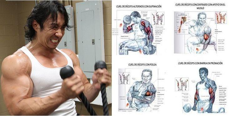 Best Bicep Workouts for Mass - weighteasyloss.com