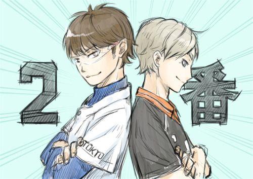 Daiya no Ace x Haikyuu!! | Miyuki Kazuya | Sugawara Koushi