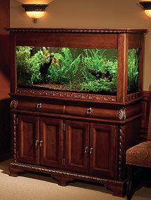 Showcase your aquarium with a wood stand //amzn.to/2qWZ2qa & The 25+ best 75 gallon aquarium stand ideas on Pinterest | Fish ...