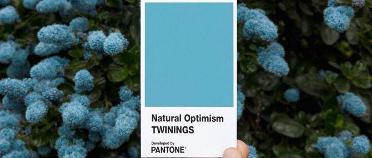 Naturalny optymizm - nowy kolor Pantone, który poprawi ci nastrój w deszczowy dzień