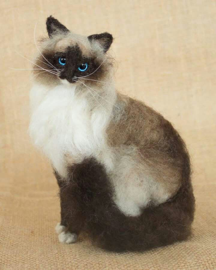 Coco Puff the Cat: Needle felted animal sculpture by The Woolen Wagon