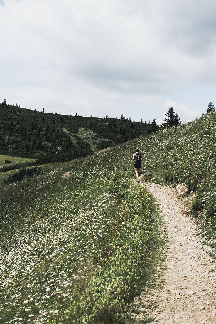 Wandern auf der Rax in Niederösterreich auf VANILLAHOLICA.com .  VANILLAHOLICA Guide für Österreich auf VANILLAHOLICA.com  Auf der Rex in Niederösterreich zu wandern ist sowohl für Anfänger als auch Profis etwas.Österreich ist ein Paradies für alle Naturliebhaber. Ganz gleich, ob es um die wunderschönen und atemberaubenden Bergkulisse der Alpen geht. Oder ob es sich um die blauen, bis türkisblauen Seen handelt, die im Sommer kühlen. Im Sommer lässt es sich in Österreich perfekt wandern.