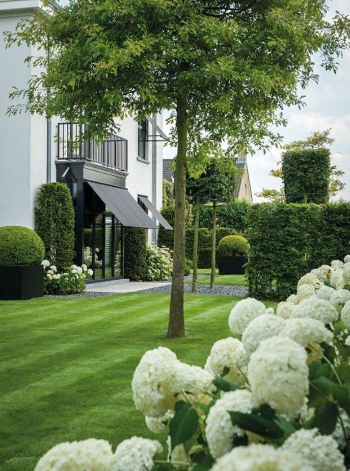 Gras in achtertuin, niet in voortuin