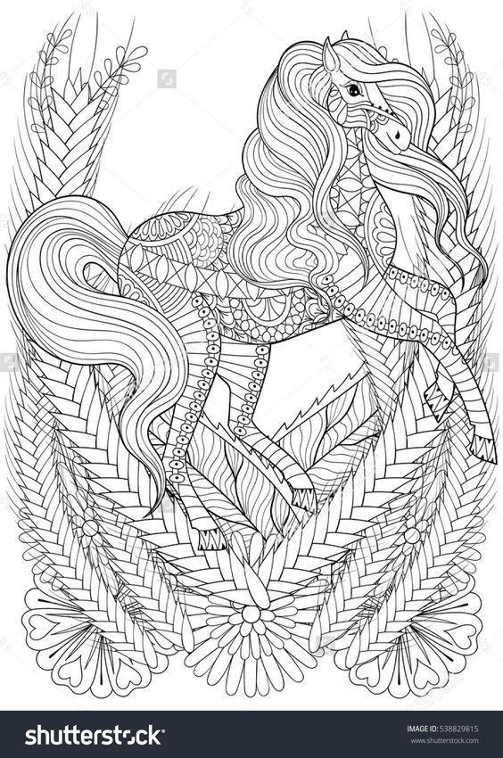 Horse Flowers Zentangle Animal Book Cover Art Covers Adult Coloring Books Colouring Shirt Print Hand Drawn