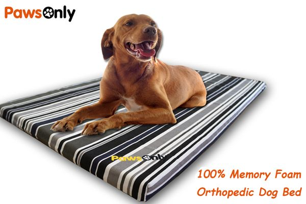 Large Stripe Comfort Memory Foam Dog Bed