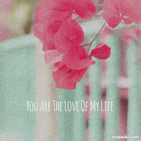 LyricArt for Love Of My Life by Jim Brickman Pink