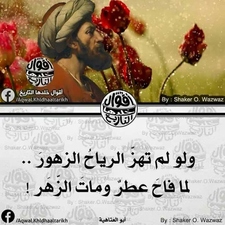 Pin By Kolvi Mytri On كلمات لها معني Islamic Quotes Poster Movie Posters