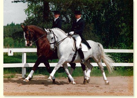 Leppävaaran ratsastuskoulu, Maneesipolku 4