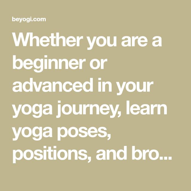 Whether you are a beginner or advanced in your yoga journey, learn yoga poses, positions, and browse through our library to learn to teach yoga poses.