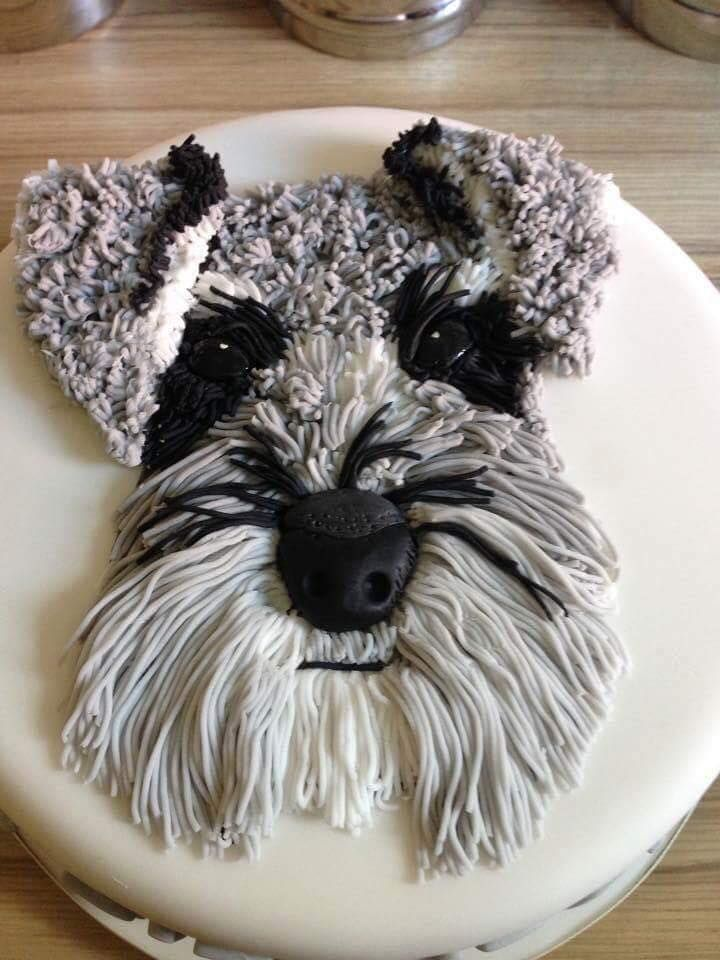 It's a Schnauzer cake...how cool is that?!