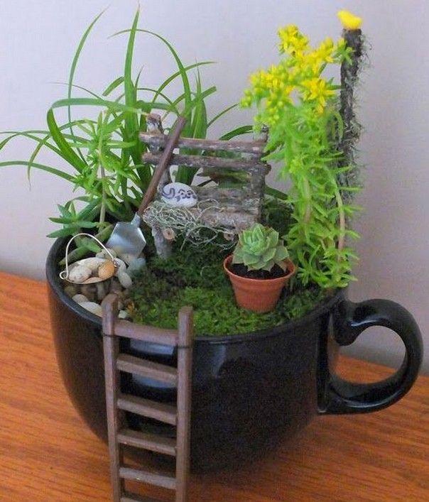 Миниатюрный сад в чашке