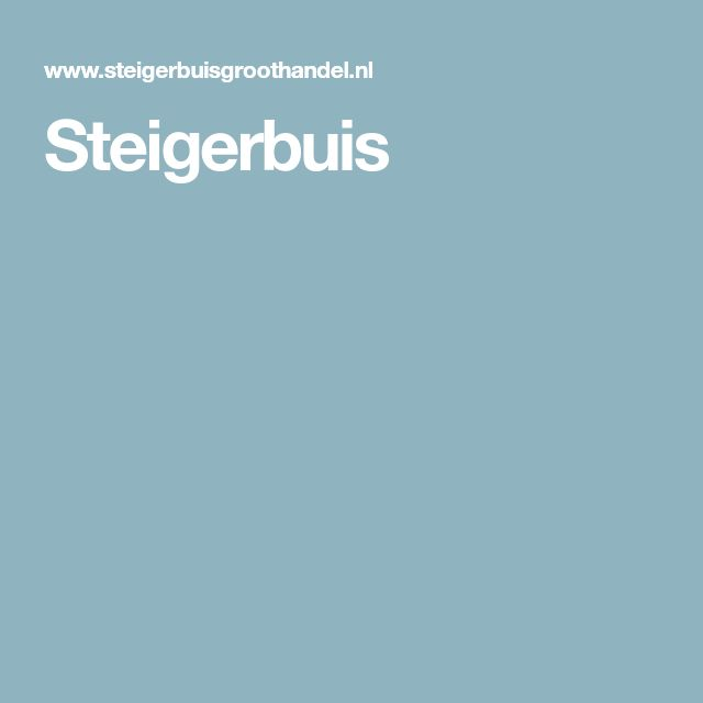 Steigerbuis