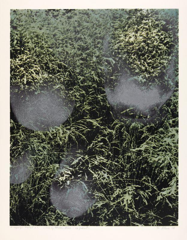 Per Kleiva, Du og tårene dine, og graset. 1978