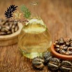 Top 10 Castor Oil Beauty Benefits for Skin and Hair   Castor oil is extracted from seed products of the castor oil plant. It really is colorless to very pale yellow in color with an unpleasant odor. This oil has traditionally..  The post  Top 10 Castor Oil Beauty Benefits for Skin and Hair  appeared first on  Diva lives .  #Health #Food  #News  #castor  #healthbenefits  #oil