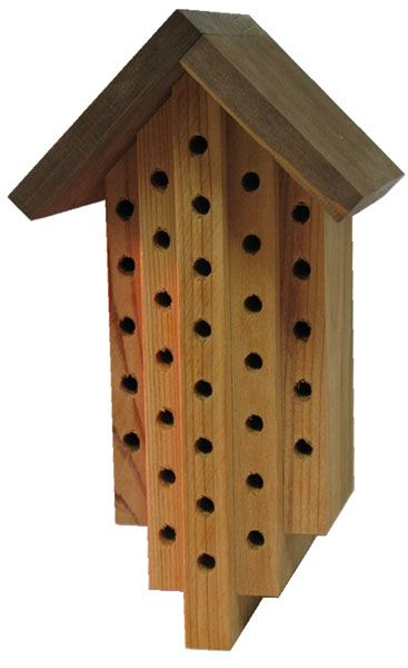 this attractive wood mason bee house replicates the natural cavities these bees would normally choose to