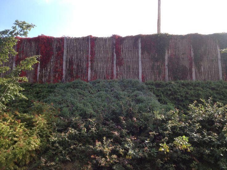 24 best Noise barriers - mur antibruit images on Pinterest Wall