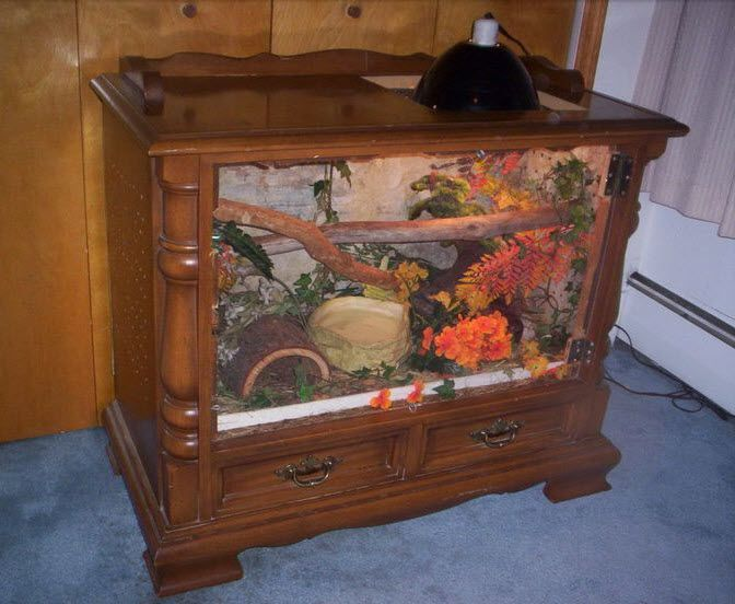 Tv frame terrarium craft ideas pinterest for Coffee table enclosure