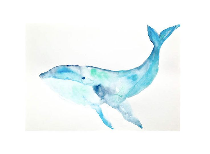 ORIGINAL watercolour painting, art, 8.2 inches by 11.8 inches, Watercolour Whale, Art, Whale Art, Sea Life Art, Costal Art, Costal decor by OriginalsbyCloe on Etsy (null)