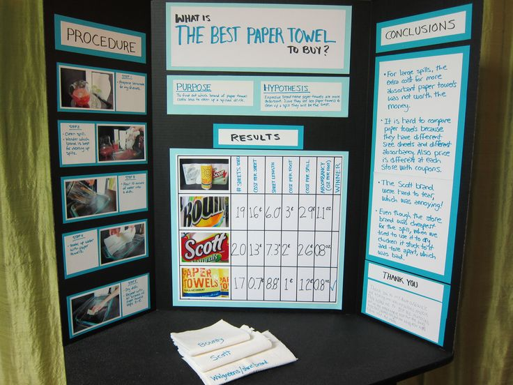 How to Create a Winning Display Board for a Social Studies Fair