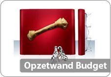 Opzetwand budget