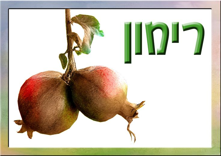 shavuot milk products