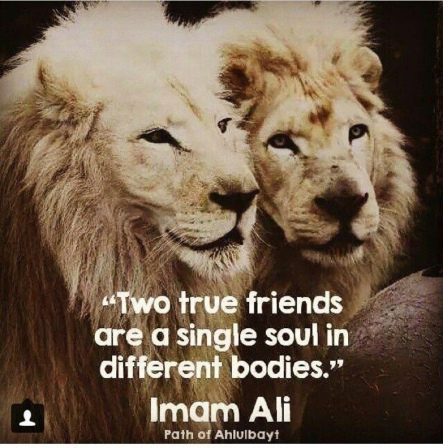 Brother Ali Quotes: Ahlu Al Beit