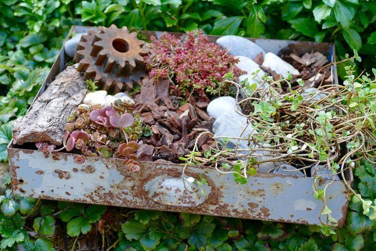 bepflanzte Metallschublade