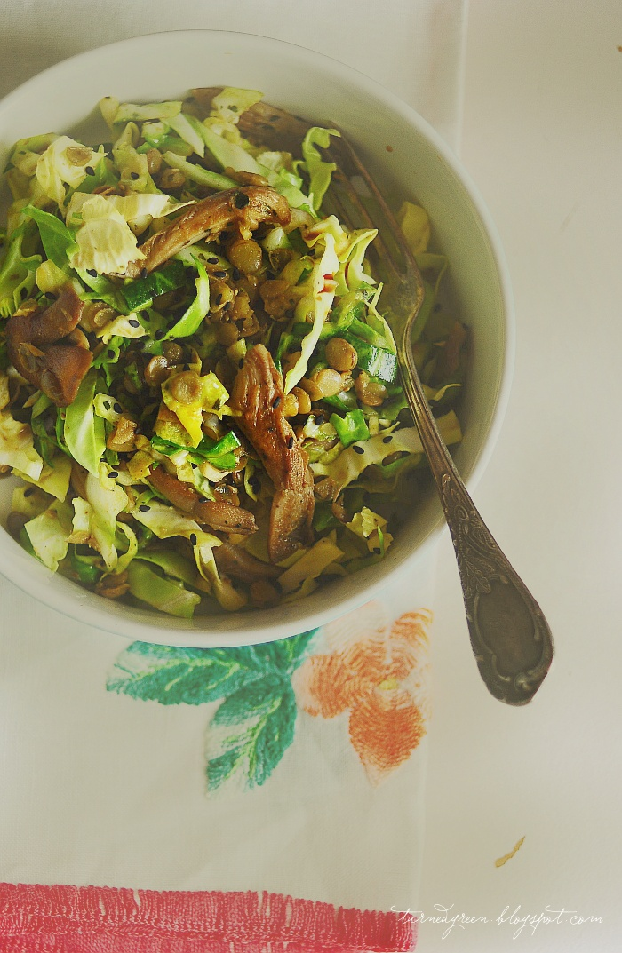 cabbage, lentils and oyster mushrooms