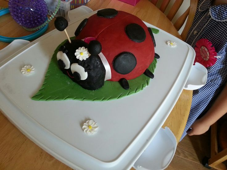 My daughters 5th birthday cake 🐞