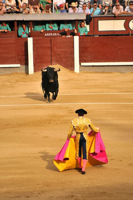 Plaza de Toros de Las Ventas, Madrid.  I absolutely hated it.  As an animal defender, I think it is cruel sport.  No offense.
