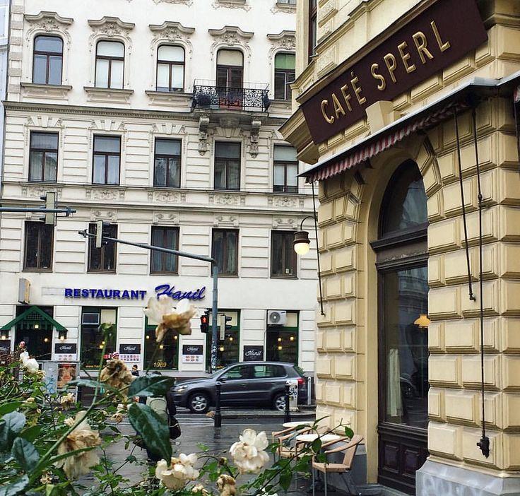 """Итан Хоук и Жюли Дельпи мирно беседовали в этой кафешке - герои фильма """"Перед рассветом"""" ,1995 - первой части замечательной трилогии от Линклейтера. #вена #австрия #vienna #viena #wien #travel #travelling #travelgram #traveller #cafe #sperl #cafesperl #cr"""