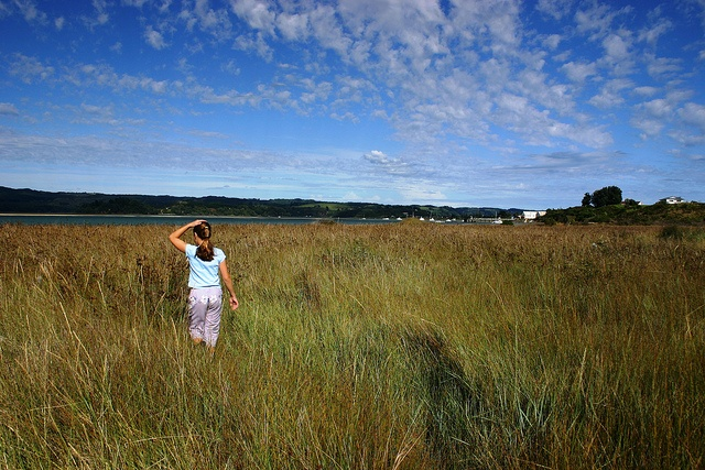 LocumLENS Finalist #2 This is what it looks like when everything is right in life. Dr. Mark Cogen's daughter walks through the tidal marsh of Ohiwa Harbor, outside of their home in Ohope Beach New Zealand