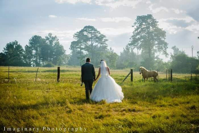 Your photographer will capture your most important day in our ideal backdrops - a rustic ruin, flowering gardens, a country field with tall glass and long distance views, an open air leafy chapel, water fountains and a dazzling banqueting hall!  -  -  -  #wedding #southafrica #engaged #heasked #shesaidyes #gettingmarried #goingtothechapel #jozi #instacool #design #flowers #instafood #followback #fit #webstagram #my #instafollow #blackandwhite