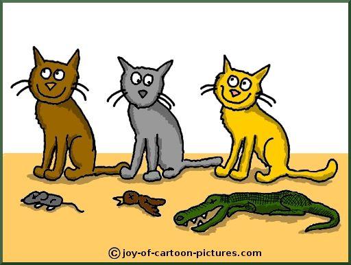 big domesticated cats