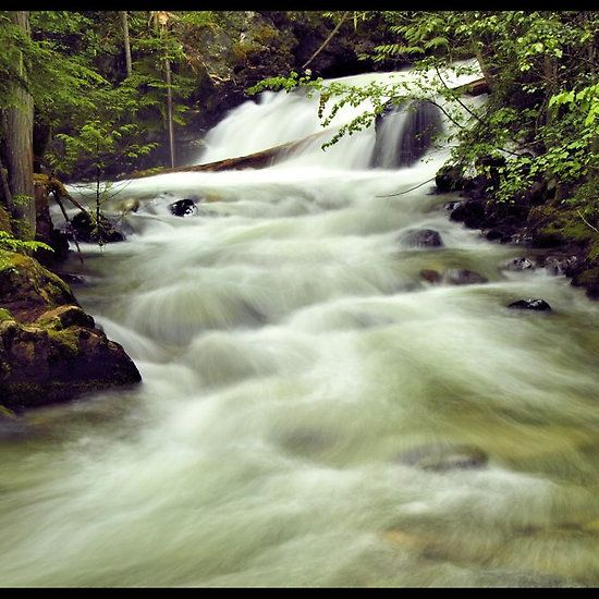 Springer Creek Waterfall Slocan British Columbia by Becky McGuire