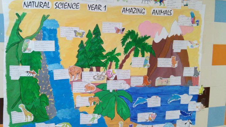 Animals display
