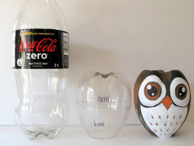 Owl out of pop bottle