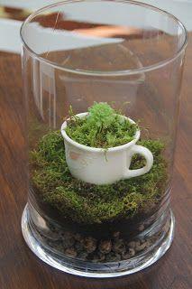 Tutorial - mini terrarium leśne