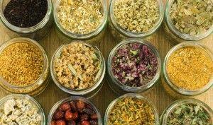 Top Ten Healing Herbs/Spices