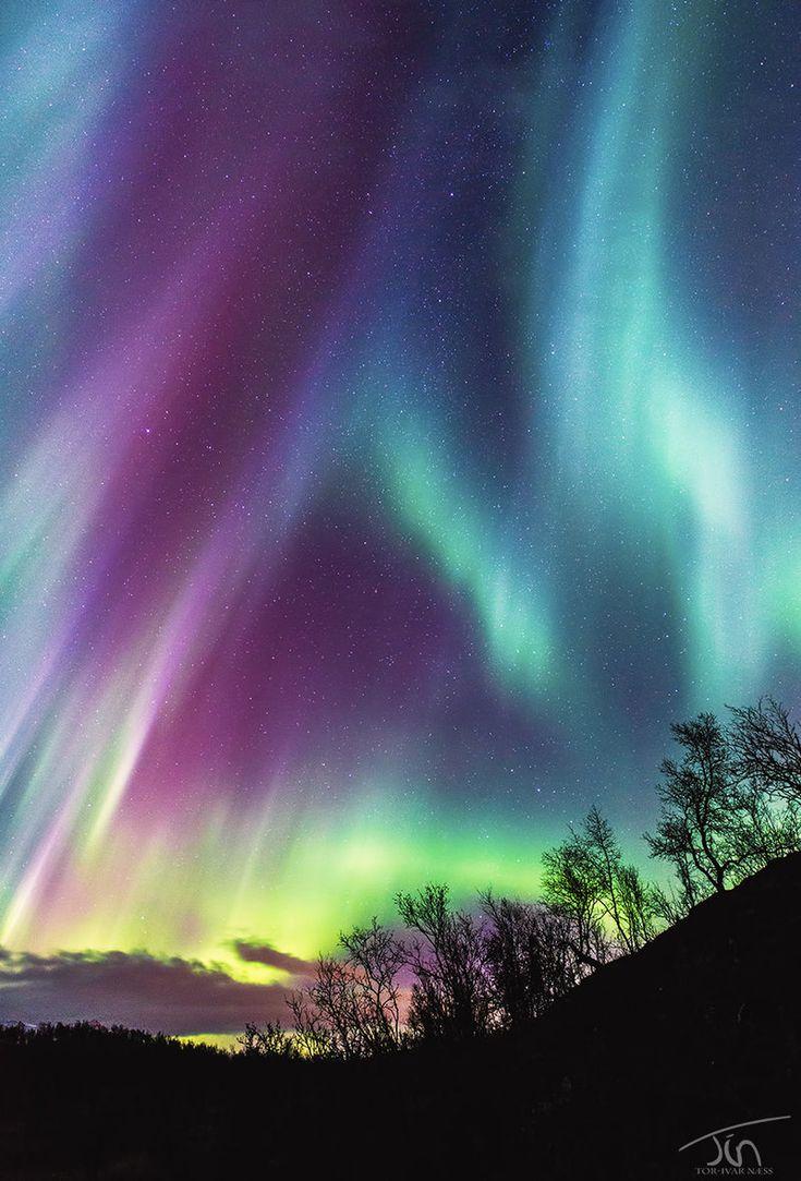 La Aurora Boreal                                                                                                                                                                                 Más