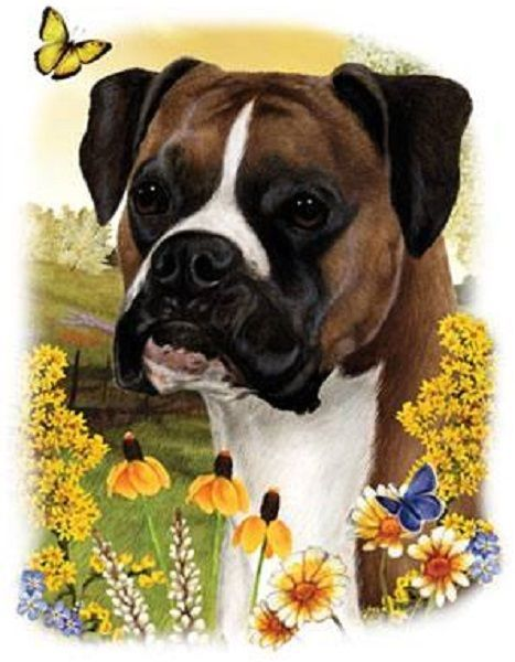 Boxer Dog Floral HEAT PRESS TRANSFER PRINT for Shirt Sweatshirt Bag Fabric #817a #AB