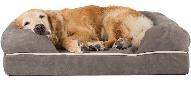 Friends Forever Premium Orthopedic Dog Bed | Orthopedic Dog Bed | Orthopedic Dog Bed Reviews