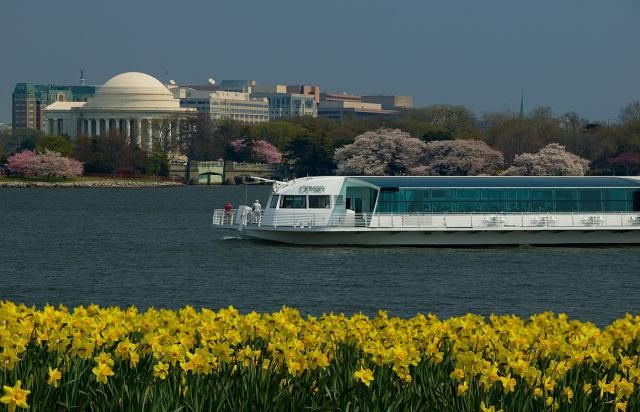 See a guide to all of the Washington DC cruises, learn about all of the cruise companies and see information about the vessels, tickets, and more.