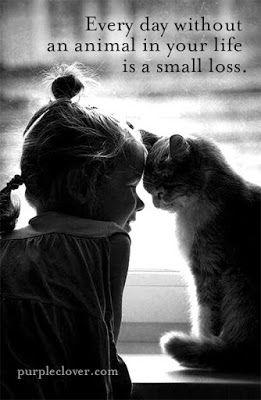 """Preghiera di ringraziamento per tutti gli animali Grazie, Signore, per gli animali tutti: la tigre, l' orso, l' elefante, il cavallo, la mucca e la capra. Tu, o Signore, sei il pastore e ci hai chiamato: """"mio gregge"""". Grazie per gli uccelli che a te cantano inni e per i pesci che vagano negli abissi di tutto il creato. Quando torno a casa, spesso affaticata e stanca, il nostro cagnolino mi viene incontro abbaiando felice e mi dà il benvenuto leccandomi le mani. Io ho il dono di tanti amici…"""