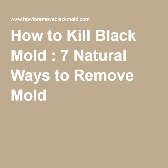 Natural Ways To Remove Mold From Wood