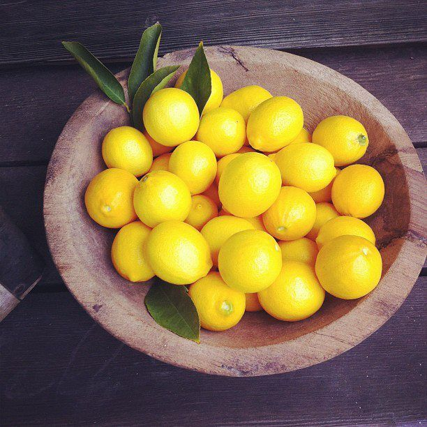 Meyer lemons make lovely table decorations for our June entertaining feature! home