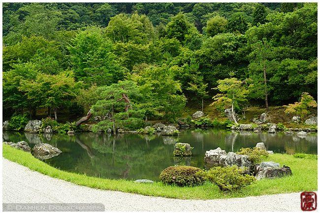 New green at Tenryu-ji Temple garden