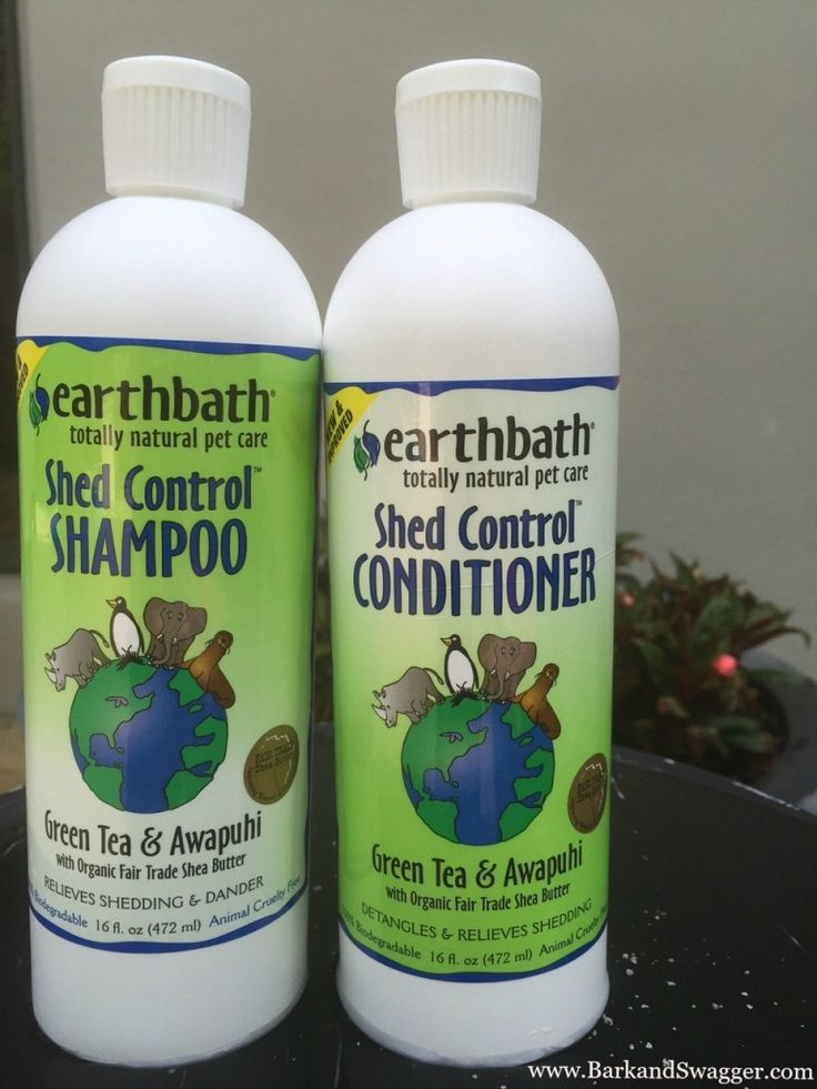 Control Shedding in Dogs I'm In! Review of the New earthbath Shed Control Shampoo and Conditioner